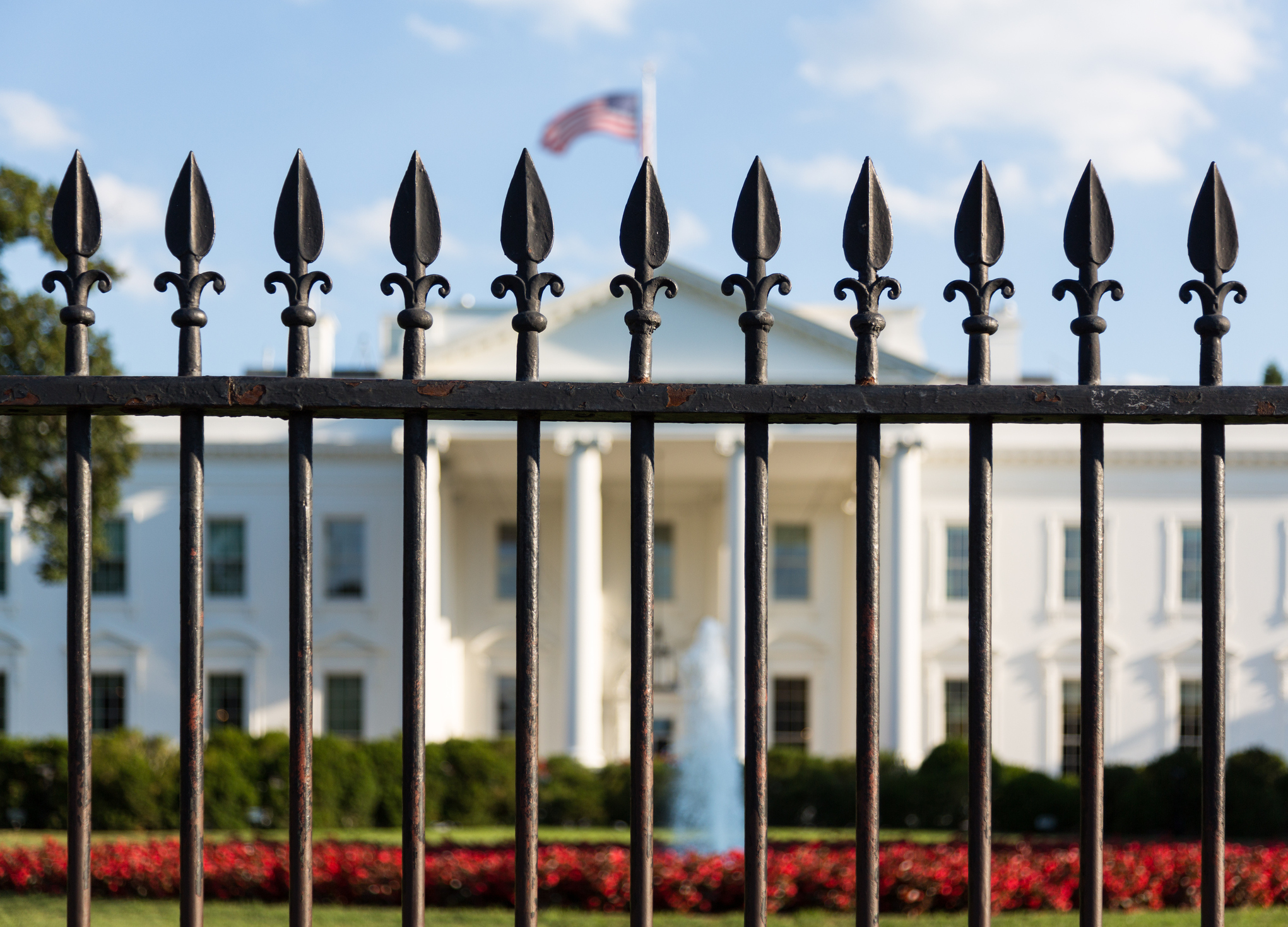 The history of the fence with diamonds