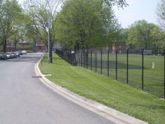 8 black vinyl coated chain link fence with two (2) strand c